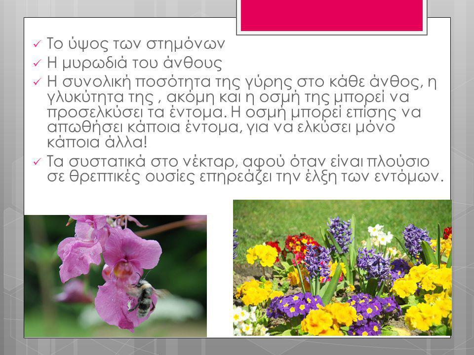  Το ύψος των στημόνων  Η μυρωδιά του άνθους  Η συνολική ποσότητα της γύρης στο κάθε άνθος, η γλυκύτητα της, ακόμη και η οσμή της μπορεί να προσελκύ