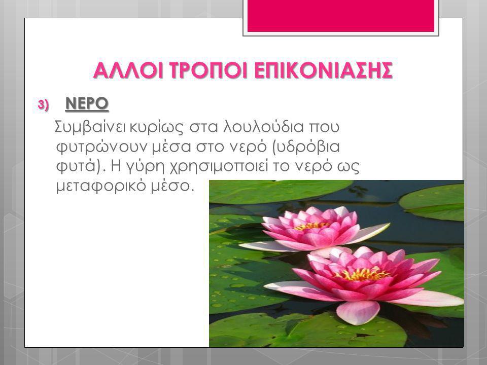 3) ΝΕΡΟ Συμβαίνει κυρίως στα λουλούδια που φυτρώνουν μέσα στο νερό (υδρόβια φυτά). Η γύρη χρησιμοποιεί το νερό ως μεταφορικό μέσο. ΑΛΛΟΙ ΤΡΟΠΟΙ ΕΠΙΚΟΝ
