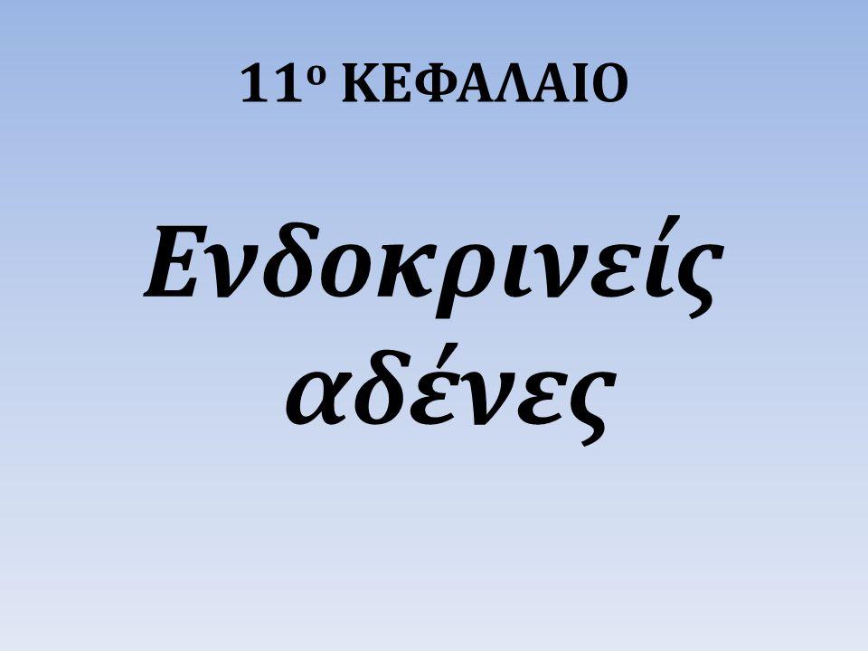11 ο ΚΕΦΑΛΑΙΟ Ενδοκρινείς αδένες