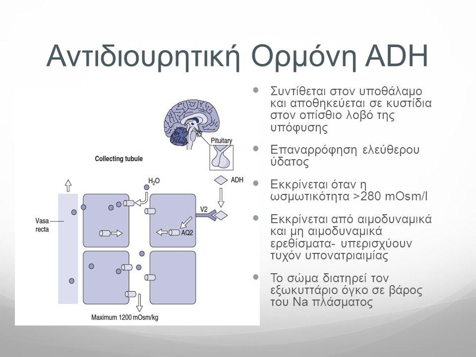Αντιδιουρητική Ορμόνη ADH  Συντίθεται στον υποθάλαμο και αποθηκεύεται σε κυστίδια στον οπίσθιο λοβό της υπόφυσης  Επαναρρόφηση ελεύθερου ύδατος  Eκ