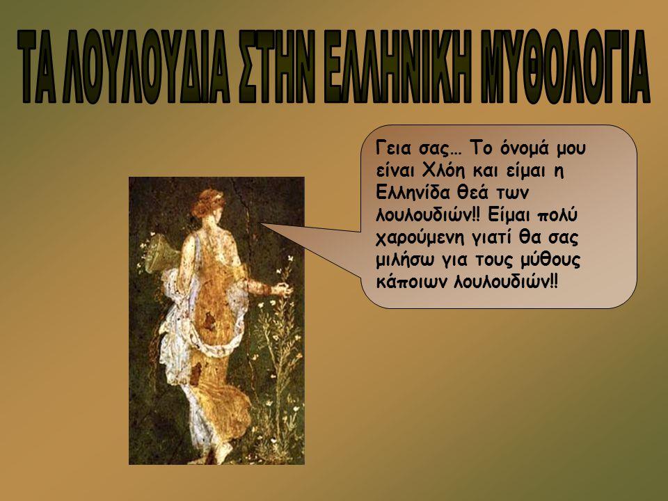 Γεια σας… Το όνομά μου είναι Χλόη και είμαι η Ελληνίδα θεά των λουλουδιών!! Είμαι πολύ χαρούμενη γιατί θα σας μιλήσω για τους μύθους κάποιων λουλουδιώ