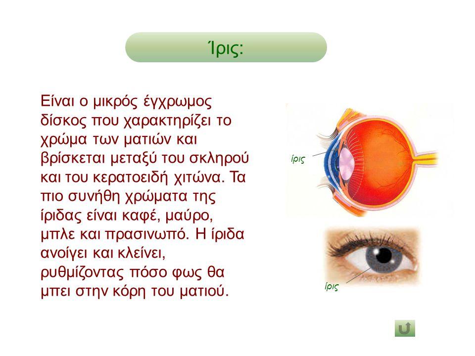 Είναι ο μικρός έγχρωμος δίσκος που χαρακτηρίζει το χρώμα των ματιών και βρίσκεται μεταξύ του σκληρού και του κερατοειδή χιτώνα. Τα πιο συνήθη χρώματα