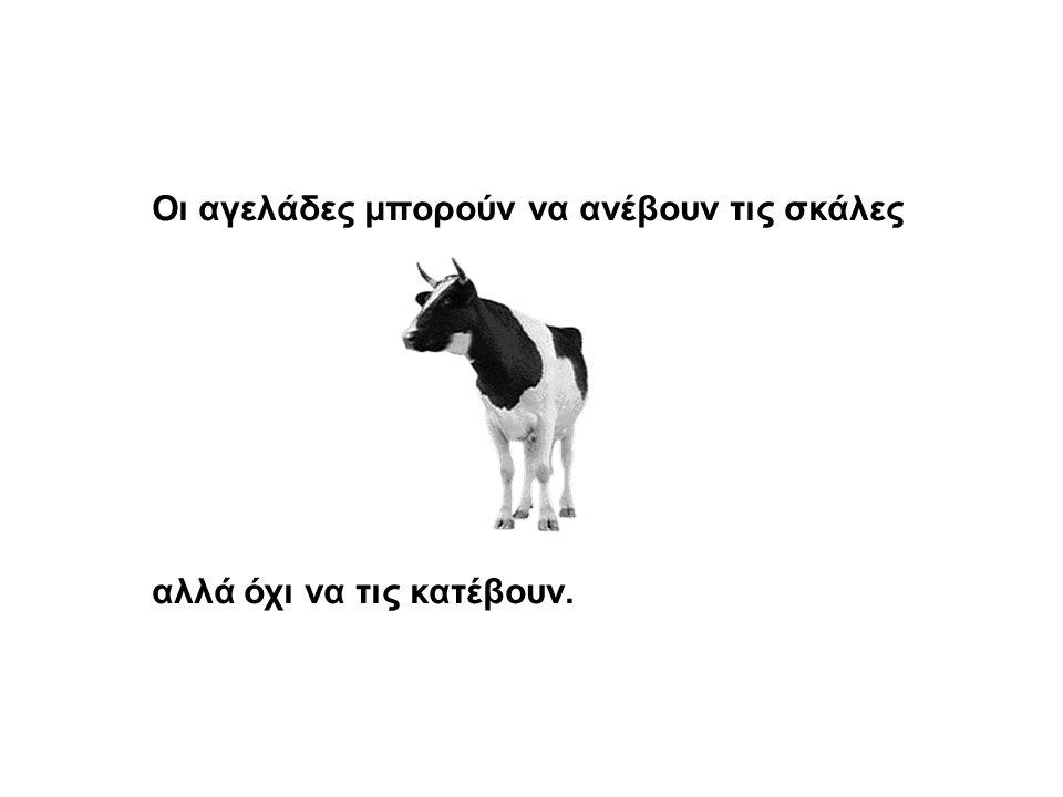 Οι αγελάδες μπορούν να ανέβουν τις σκάλες αλλά όχι να τις κατέβουν.