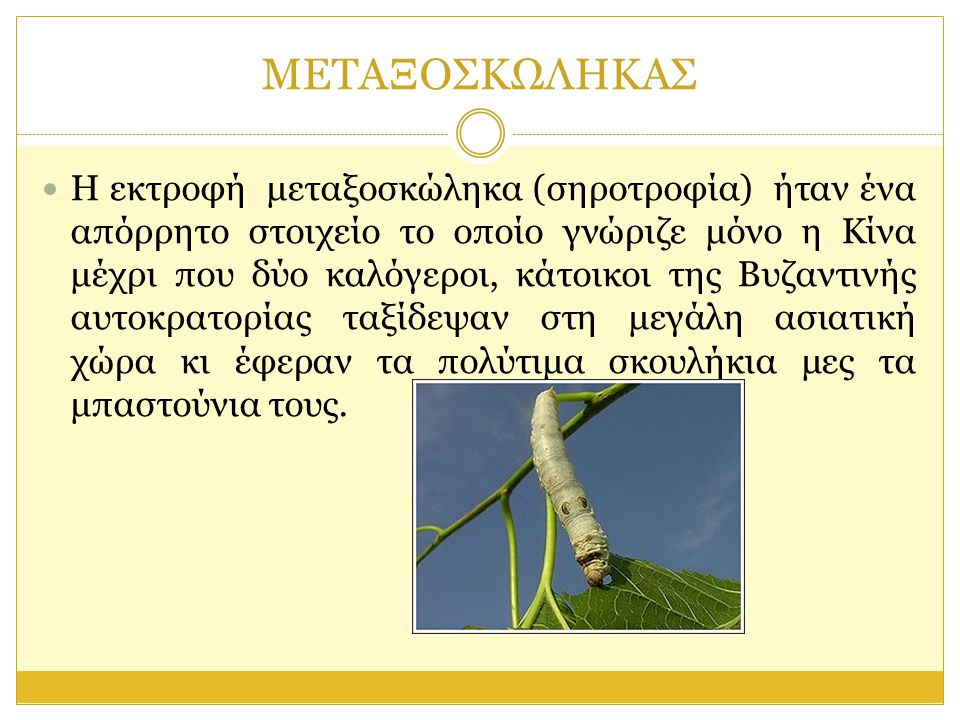 ΚΛΑΔΩΜΑ  Οι μεταξοσκώληκες και γενικότερα τα σκουλήκια μια περίοδο της ζωής τους την περνάνε πλέκοντας το κουκούλι τους.