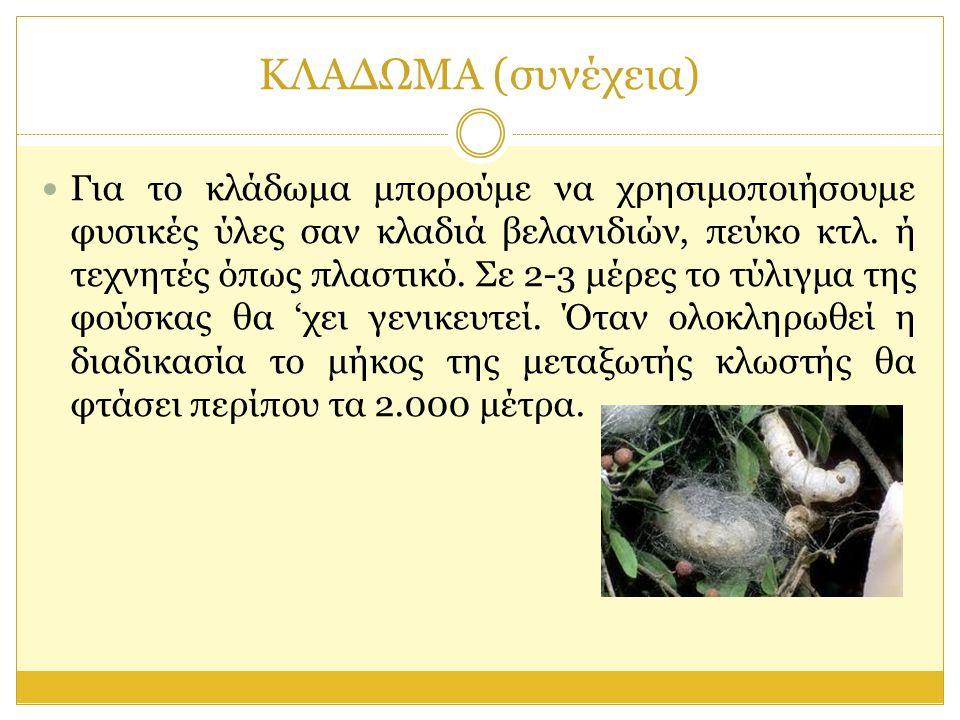 ΞΕΚΛΑΔΩΜΑ  Το ξεκλάδωμα είναι μια διαδικασία που έχει σκοπό τη συγκομιδή των κουκουλιών πάνω απ' τα δέντρα.