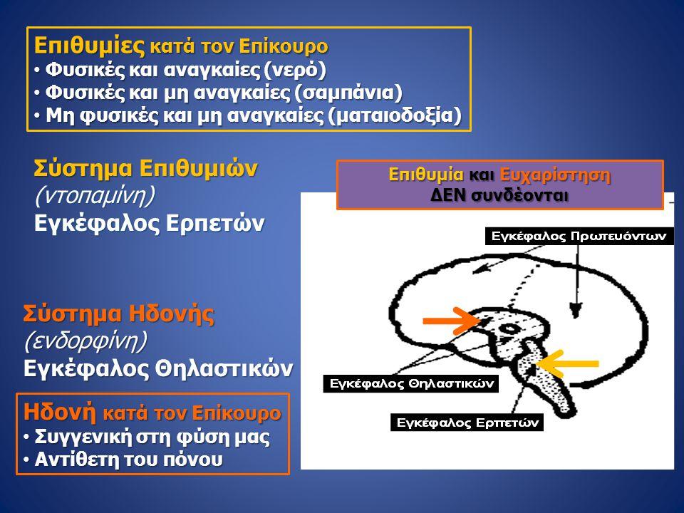 Σύστημα Επιθυμιών (ντοπαμίνη) Εγκέφαλος Ερπετών Σύστημα Ηδονής (ενδορφίνη) Εγκέφαλος Θηλαστικών Επιθυμίες κατά τον Επίκουρο • Φυσικές και αναγκαίες (ν