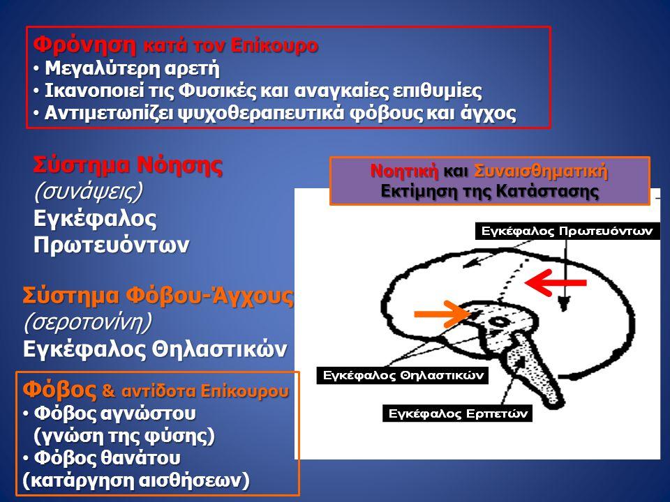 Σύστημα Νόησης (συνάψεις)ΕγκέφαλοςΠρωτευόντων Σύστημα Φόβου-Άγχους (σεροτονίνη) Εγκέφαλος Θηλαστικών Φρόνηση κατά τον Επίκουρο • Μεγαλύτερη αρετή • Ικ
