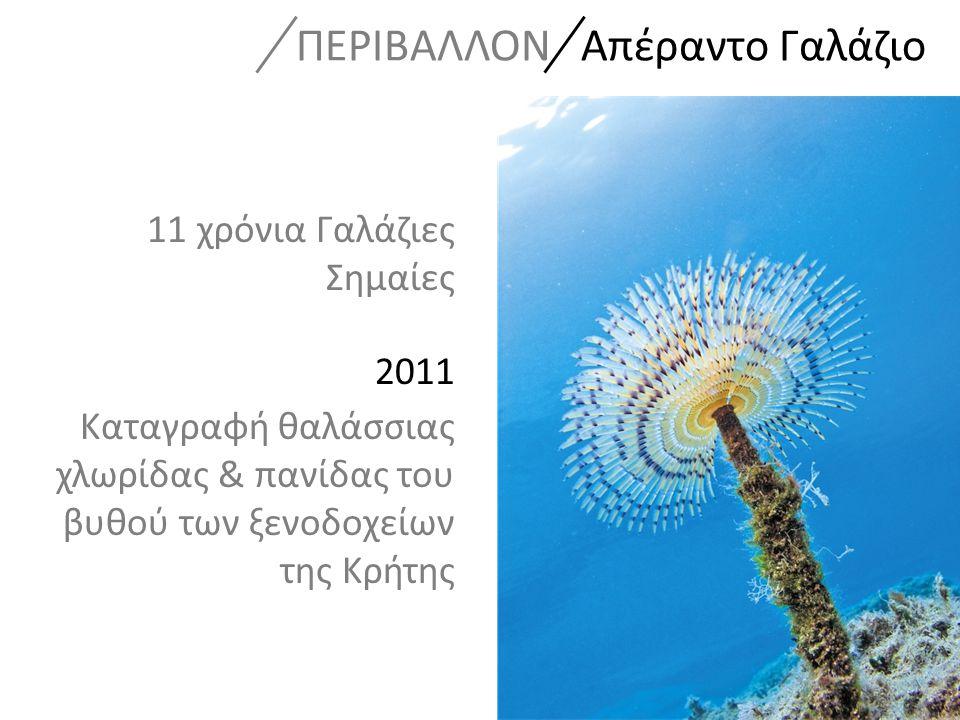 11 χρόνια Γαλάζιες Σημαίες 2011 Καταγραφή θαλάσσιας χλωρίδας & πανίδας του βυθού των ξενοδοχείων της Κρήτης ΠΕΡΙΒΑΛΛΟΝ Απέραντο Γαλάζιο