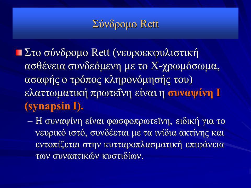 Σύνδρομο Rett Στο σύνδρομο Rett (νευροεκφυλιστική ασθένεια συνδεόμενη με το Χ-χρωμόσωμα, ασαφής ο τρόπος κληρονόμησής του) ελαττωματική πρωτεΐνη είναι η συναψίνη Ι (synapsin Ι).