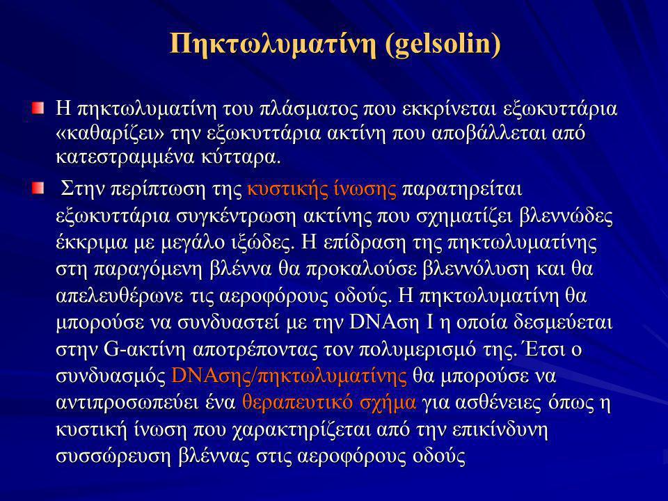Πηκτωλυματίνη (gelsolin) Η πηκτωλυματίνη του πλάσματος που εκκρίνεται εξωκυττάρια «καθαρίζει» την εξωκυττάρια ακτίνη που αποβάλλεται από κατεστραμμένα