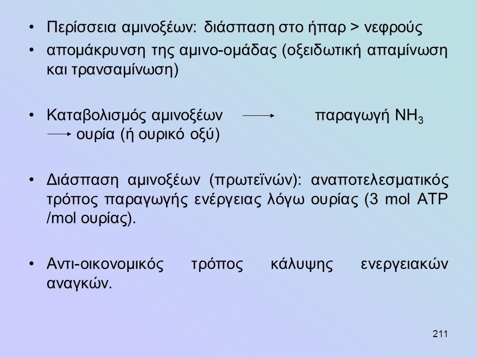 211 •Περίσσεια αμινοξέων: διάσπαση στο ήπαρ > νεφρούς •απομάκρυνση της αμινο-ομάδας (οξειδωτική απαμίνωση και τρανσαμίνωση) •Καταβολισμός αμινοξέων πα