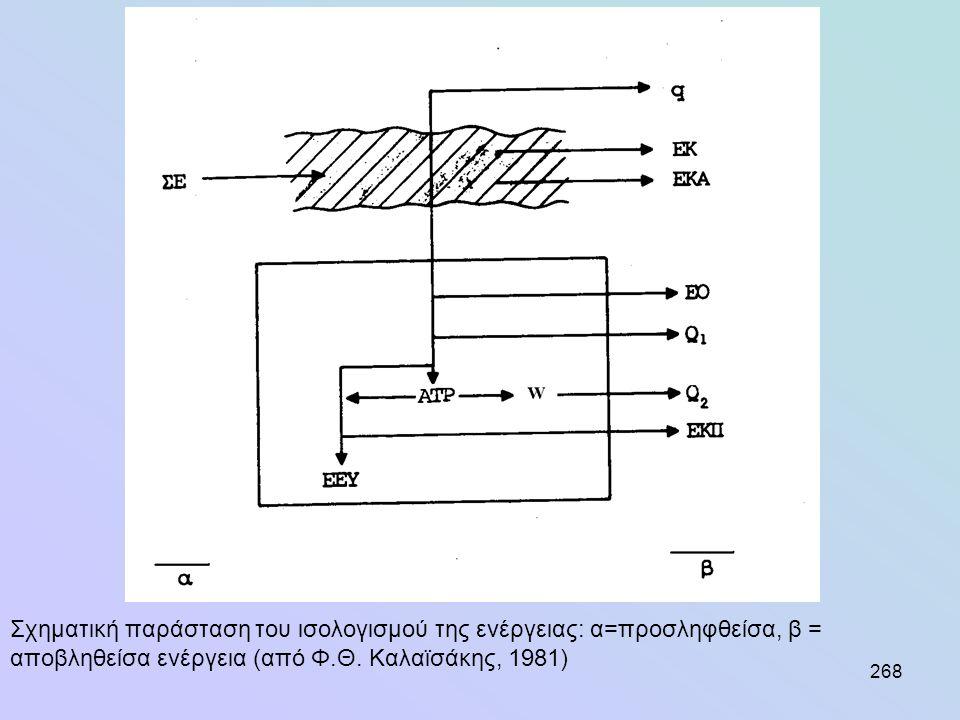 268 Σχηματική παράσταση του ισολογισμού της ενέργειας: α=προσληφθείσα, β = αποβληθείσα ενέργεια (από Φ.Θ. Καλαϊσάκης, 1981)