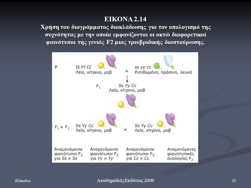 iGenetics 21 Ακαδημαϊκές Εκδόσεις 2009 ΕΙΚΟΝΑ 2.14 Χρήση του διαγράμματος διακλάδωσης για τον υπολογισμό της συχνότητας με την οποία εμφανίζονται οι ο