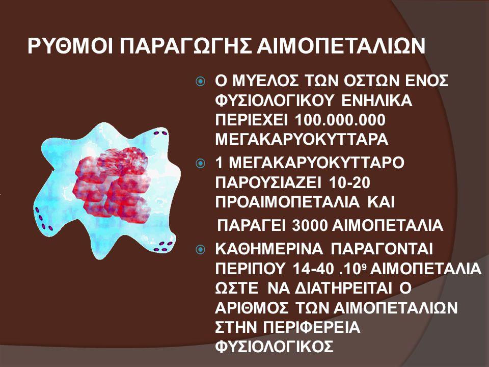 ΡΥΘΜΟΙ ΠΑΡΑΓΩΓΗΣ ΑΙΜΟΠΕΤΑΛΙΩΝ  Ο ΜΥΕΛΟΣ ΤΩΝ ΟΣΤΩΝ ΕΝΟΣ ΦΥΣΙΟΛΟΓΙΚΟΥ ΕΝΗΛΙΚΑ ΠΕΡΙΕΧΕΙ 100.000.000 ΜΕΓΑΚΑΡΥΟΚΥΤΤΑΡΑ  1 ΜΕΓΑΚΑΡΥΟΚΥΤΤΑΡΟ ΠΑΡΟΥΣΙΑΖΕΙ 10