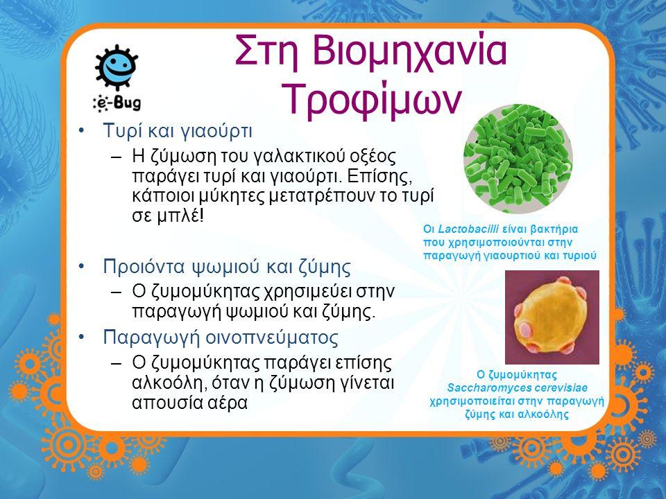 Στη Βιομηχανία Τροφίμων •Ζύμωση –Μία διαδικασία κατά την οποία τα βακτήρια αποδομούν σάκχαρα σε απλές ενώσεις, όπως διοξείδιο του άνθρακ ακαι αλκοόλη.