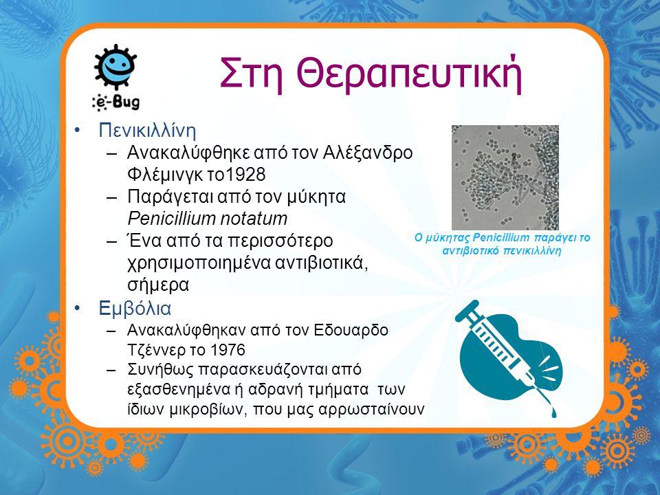 Προβιοτικά •Τι είναι; –Ζωντανοί οργανισμοί που όταν χορηγούνται σε ικανοποιητική ποσότητα ωφελούν τον ξενιστή •Τι τύπος βακτηρίων είναι; –Λακτοβάκιλλοι, οι οποίοι είναι μέρος της ευεργετικής φυσικής μικροχλωρίδας και βρίσκονται στο ανθρώπινο έντερο.
