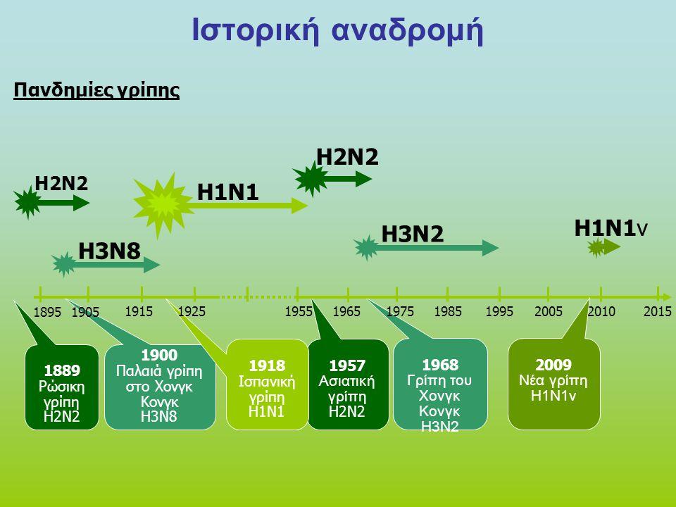 Ιστορική αναδρομή H2N2 1889 Ρώσικη γρίπη H2N2 1957 Ασιατική γρίπη H2N2 H3N2 1968 Γρίπη του Χονγκ Κονγκ Η3Ν2 H3N8 1900 Παλαιά γρίπη στο Χονγκ Κονγκ H3N