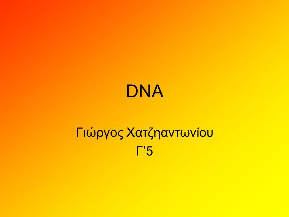 DNA • Το δε(σ)οξυριβο(ζο)νουκλεϊ(νι)κ ό οξύ (Deoxyribonucleic acid - DNA) είναι ένα νουκλεϊκό οξύ που περιέχει τις γενετικές πληροφορίες που καθορίζουν τη βιολογική ανάπτυξη όλων των κυτταρικών μορφών ζωής και των περισσοτέρων ιών.