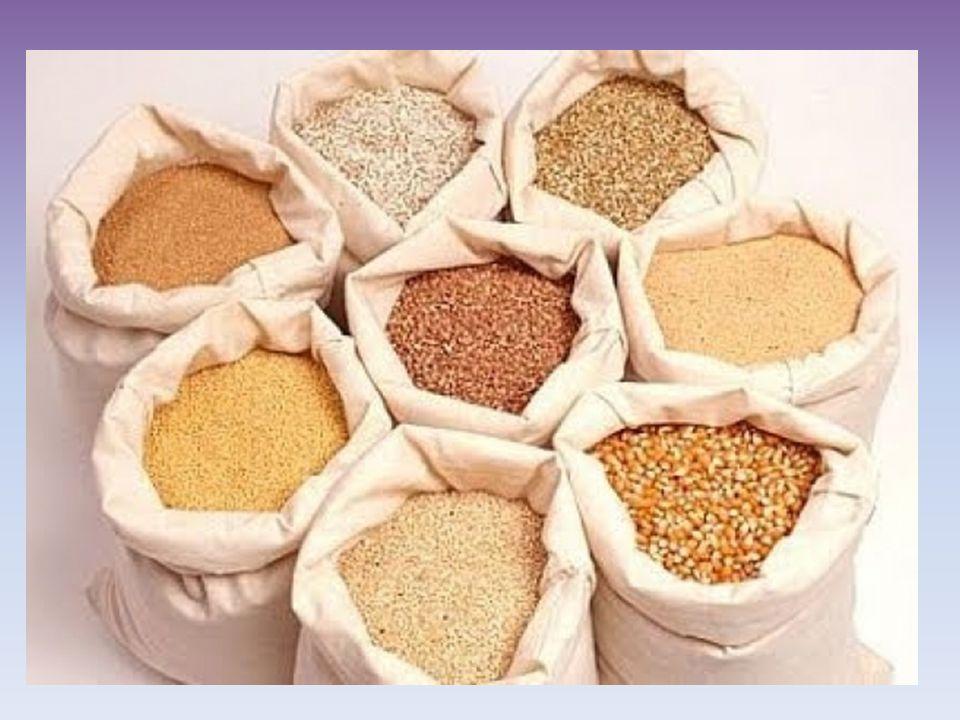 Προϊόντα σιτηρών Τα δημητριακά σπανίως χρησιμοποιούνται αυτούσια (πχ.