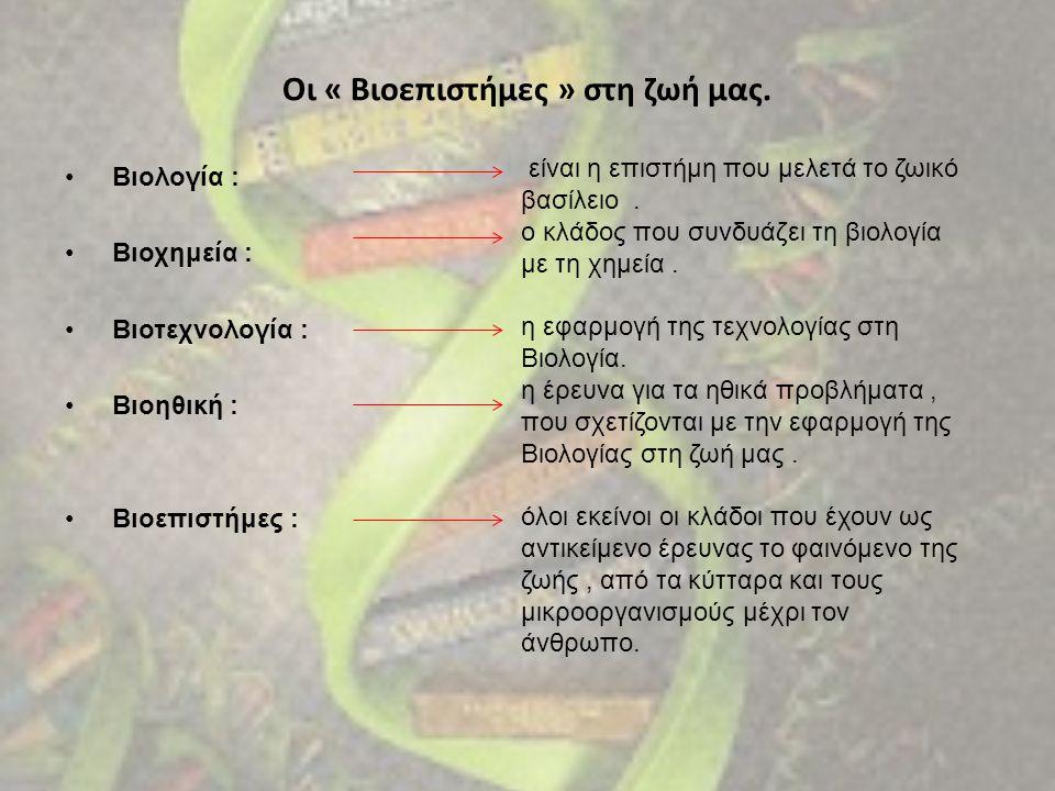 Οι « Βιοεπιστήμες » στη ζωή μας. • Β• Βιολογία : • Β• Βιοχημεία : • Β• Βιοτεχνολογία : • Β• Βιοηθική : • Β• Βιοεπιστήμες : είναι η επιστήμη που μελετά