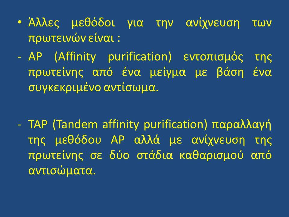 • Άλλες μεθόδοι για την ανίχνευση των πρωτεινών είναι : -AP (Affinity purification) εντοπισμός της πρωτείνης από ένα μείγμα με βάση ένα συγκεκριμένο αντίσωμα.