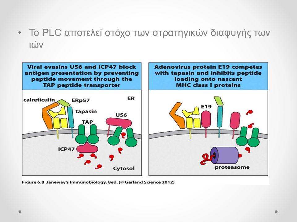 •Το PLC αποτελεί στόχο των στρατηγικών διαφυγής των ιών
