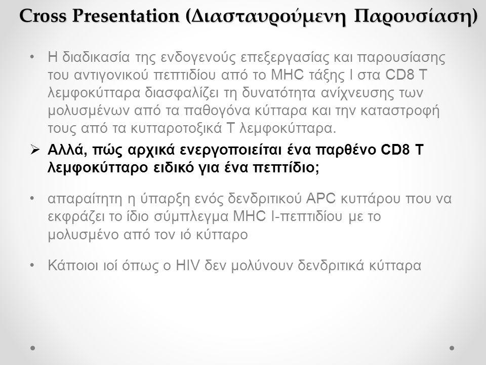 Cross Presentation (Διασταυρούμενη Παρουσίαση) •Η διαδικασία της ενδογενούς επεξεργασίας και παρουσίασης του αντιγονικού πεπτιδίου από το MHC τάξης Ι στα CD8 T λεμφοκύτταρα διασφαλίζει τη δυνατότητα ανίχνευσης των μολυσμένων από τα παθογόνα κύτταρα και την καταστροφή τους από τα κυτταροτοξικά Τ λεμφοκύτταρα.