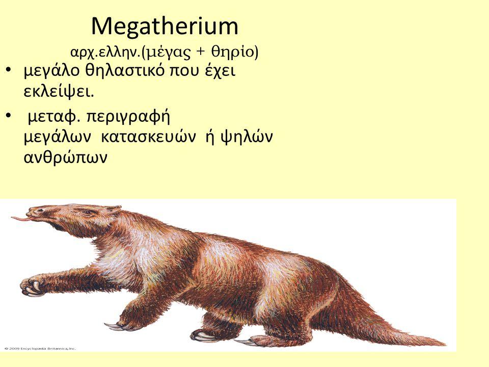 Megatherium αρχ.ελλην.(μέγας + θηρίο) • μεγάλο θηλαστικό που έχει εκλείψει.