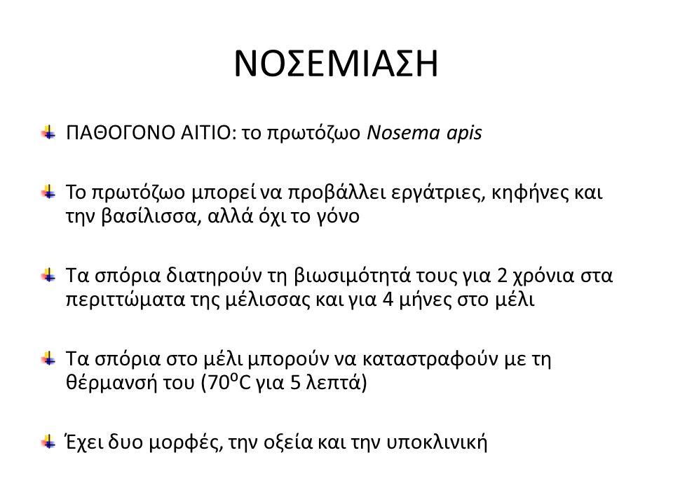 ΠΑΘΟΓΟΝΟ ΑΙΤΙΟ: το πρωτόζωο Nosema apis Το πρωτόζωο μπορεί να προβάλλει εργάτριες, κηφήνες και την βασίλισσα, αλλά όχι το γόνο Τα σπόρια διατηρούν τη