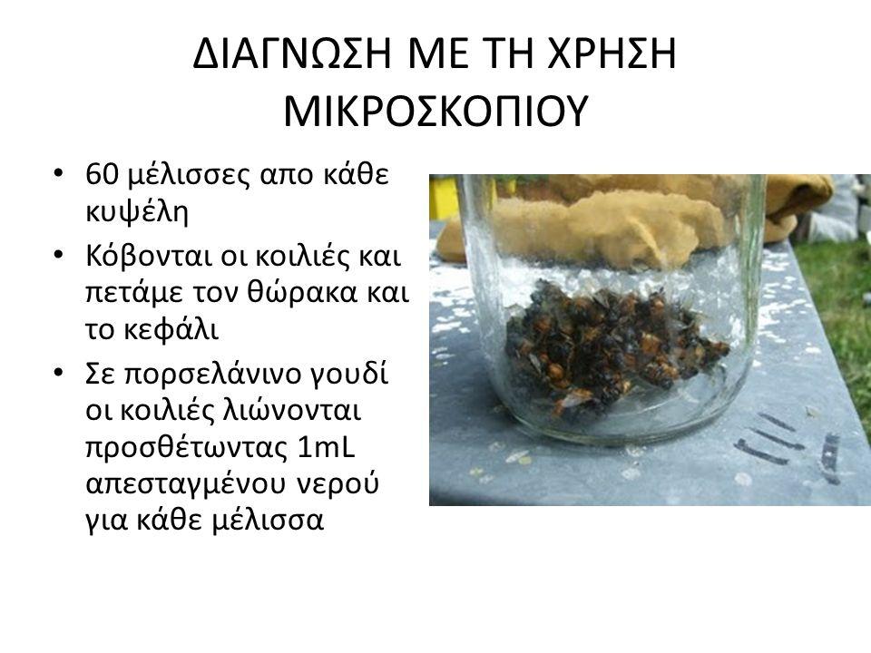 ΔΙΑΓΝΩΣΗ ΜΕ ΤΗ ΧΡΗΣΗ ΜΙΚΡΟΣΚΟΠΙΟΥ • 60 μέλισσες απο κάθε κυψέλη • Κόβονται οι κοιλιές και πετάμε τον θώρακα και το κεφάλι • Σε πορσελάνινο γουδί οι κο