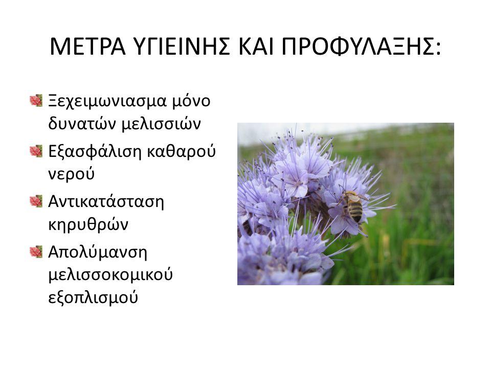 ΜΕΤΡΑ ΥΓΙΕΙΝΗΣ ΚΑΙ ΠΡΟΦΥΛΑΞΗΣ: Ξεχειμωνιασμα μόνο δυνατών μελισσιών Εξασφάλιση καθαρού νερού Αντικατάσταση κηρυθρών Απολύμανση μελισσοκομικού εξοπλισμ