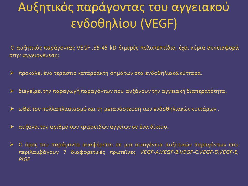 Αυξητικός παράγοντας του αγγειακού ενδοθηλίου (VEGF) Ο αυξητικός παράγοντας VEGF,35-45 kD διμερές πολυπεπτίδιο, έχει κύρια συνεισφορά στην αγγειογένεσ