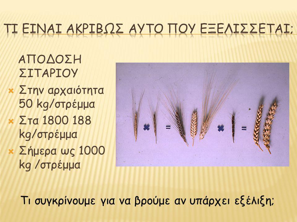 ΑΠΟΔΟΣΗ ΣΙΤΑΡΙΟΥ  Στην αρχαιότητα 50 kg/στρέμμα  Στα 1800 188 kg/στρέμμα  Σήμερα ως 1000 kg /στρέμμα Τι συγκρίνουμε για να βρούμε αν υπάρχει εξέλιξ
