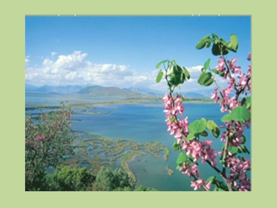 Στις λίμνες Κορώνεια και Βόλβη