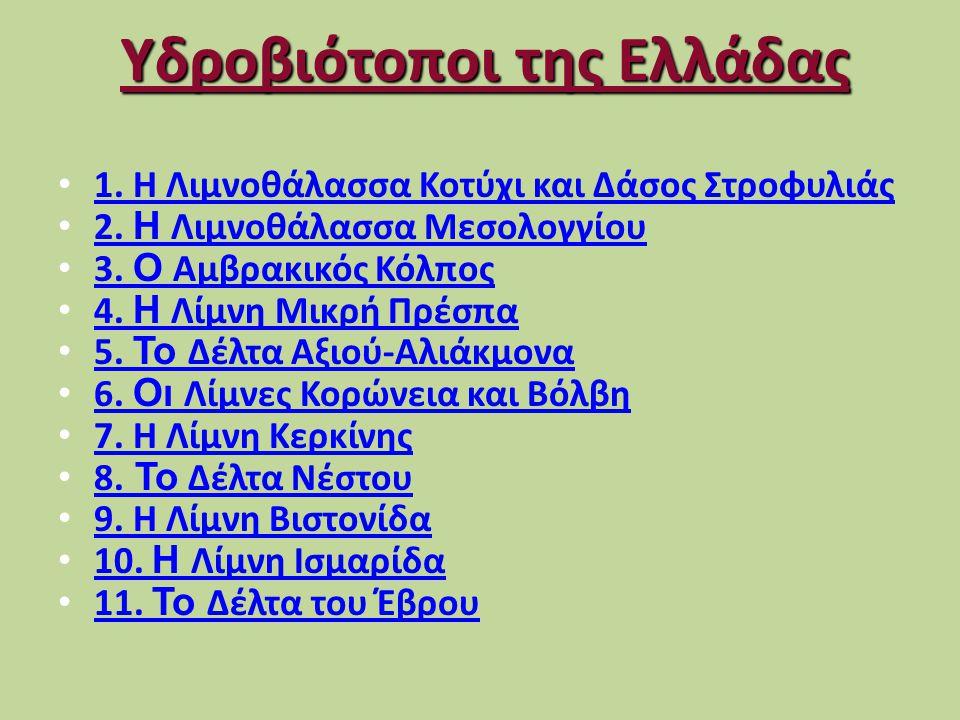 Υδροβιότοποι της Ελλάδας • 1.Η Λιμνοθάλασσα Κοτύχι και Δάσος Στροφυλιάς 1.