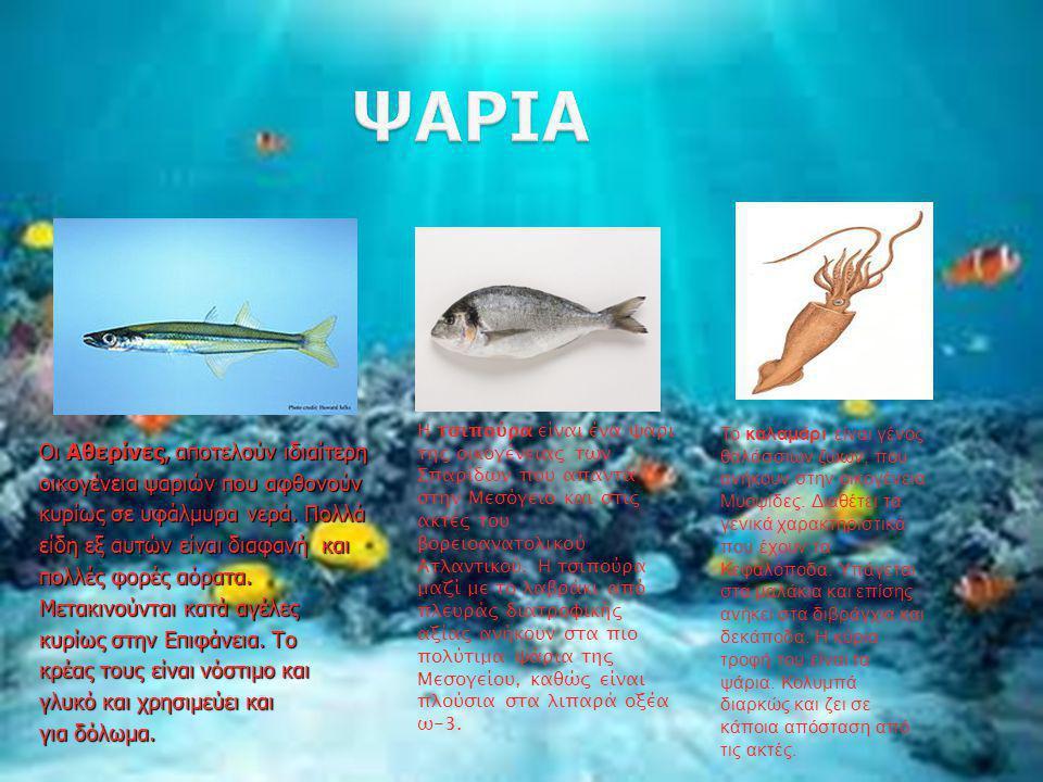 Οι Αθερίνες, αποτελούν ιδιαίτερη οικογένεια ψαριών που αφθονούν κυρίως σε υφάλμυρα νερά. Πολλά είδη εξ αυτών είναι διαφανή και πολλές φορές αόρατα. Με