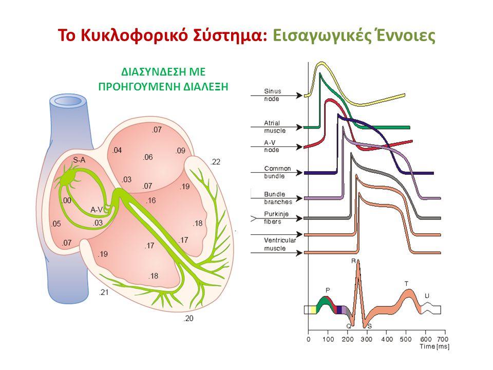 Το Κυκλοφορικό Σύστημα: Εισαγωγικές Έννοιες Το αυτόνομο νευρικό σύστημα έχει άμεση επίδραση τόσο στον φλεβόκομβο όσο και στον κολποκοιλιακό κόμβο.