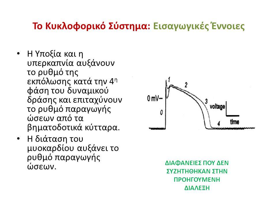 Το Κυκλοφορικό Σύστημα: Εισαγωγικές Έννοιες • Η Υποξία και η υπερκαπνία αυξάνουν το ρυθμό της εκπόλωσης κατά την 4 η φάση του δυναμικού δράσης και επι