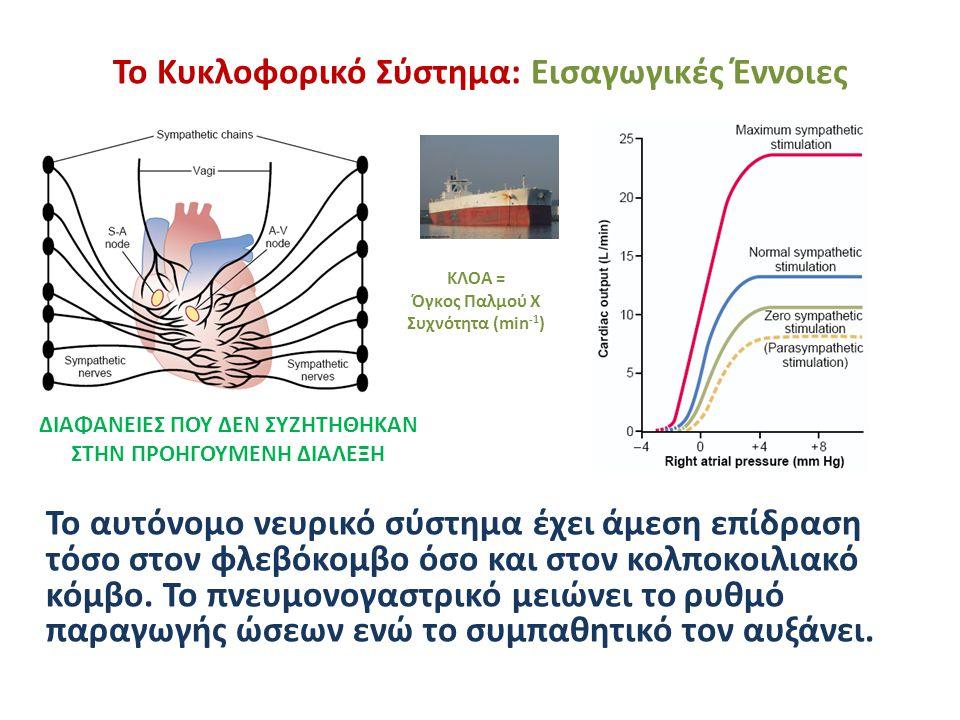 Το Κυκλοφορικό Σύστημα: Εισαγωγικές Έννοιες Το αυτόνομο νευρικό σύστημα έχει άμεση επίδραση τόσο στον φλεβόκομβο όσο και στον κολποκοιλιακό κόμβο. Το
