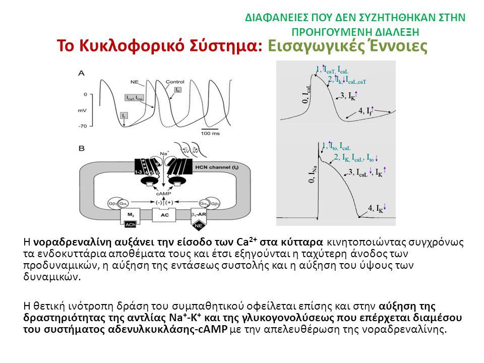 Το Κυκλοφορικό Σύστημα: Εισαγωγικές Έννοιες Η νοραδρεναλίνη αυξάνει την είσοδο των Ca 2+ στα κύτταρα κινητοποιώντας συγχρόνως τα ενδοκυττάρια αποθέματ