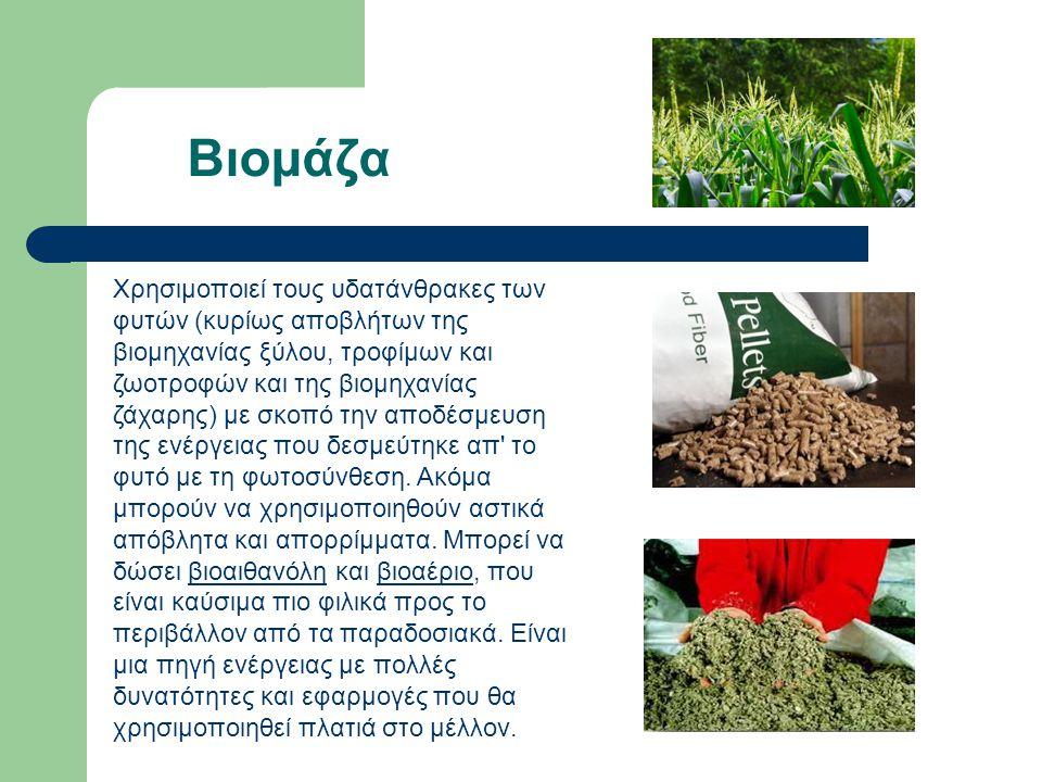 Βιομάζα Χρησιμοποιεί τους υδατάνθρακες των φυτών (κυρίως αποβλήτων της βιομηχανίας ξύλου, τροφίμων και ζωοτροφών και της βιομηχανίας ζάχαρης) με σκοπό την αποδέσμευση της ενέργειας που δεσμεύτηκε απ το φυτό με τη φωτοσύνθεση.