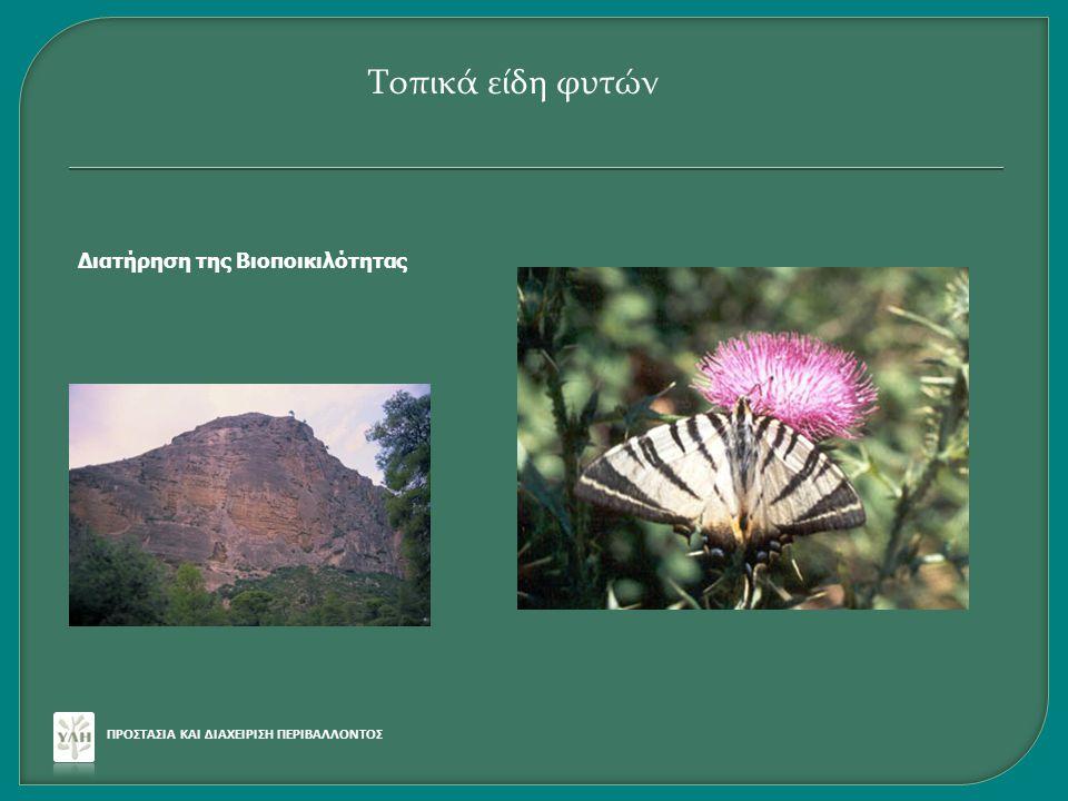 Κατάλογος με Τοπικά ελληνικά είδη κατάλληλα για φυτεύσεις  46 δένδρα  25 θάμνοι  6 μικροί θάμνοι-αναρριχώμενα ΠΡΟΣΤΑΣΙΑ ΚΑΙ ΔΙΑΧΕΙΡΙΣΗ ΠΕΡΙΒΑΛΛΟΝΤΟΣ Τοπικά είδη φυτών