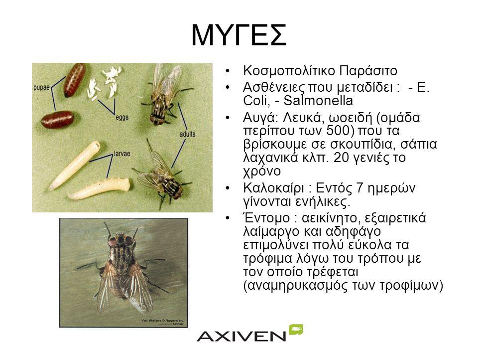 ΚΟΥΝΟΥΠΙΑ - ΦΛΕΒΟΤΟΜΟΙ •Απαραίτητη προϋπόθεση για την εγκατάστασή κουνουπιών είναι η ύπαρξη έστω και μικρής ποσότητας στάσιμου ή με μικρή ροή νερού. •
