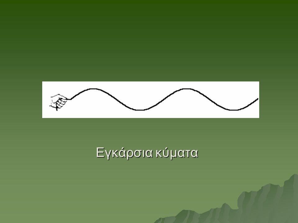 Εγκάρσια κύματα