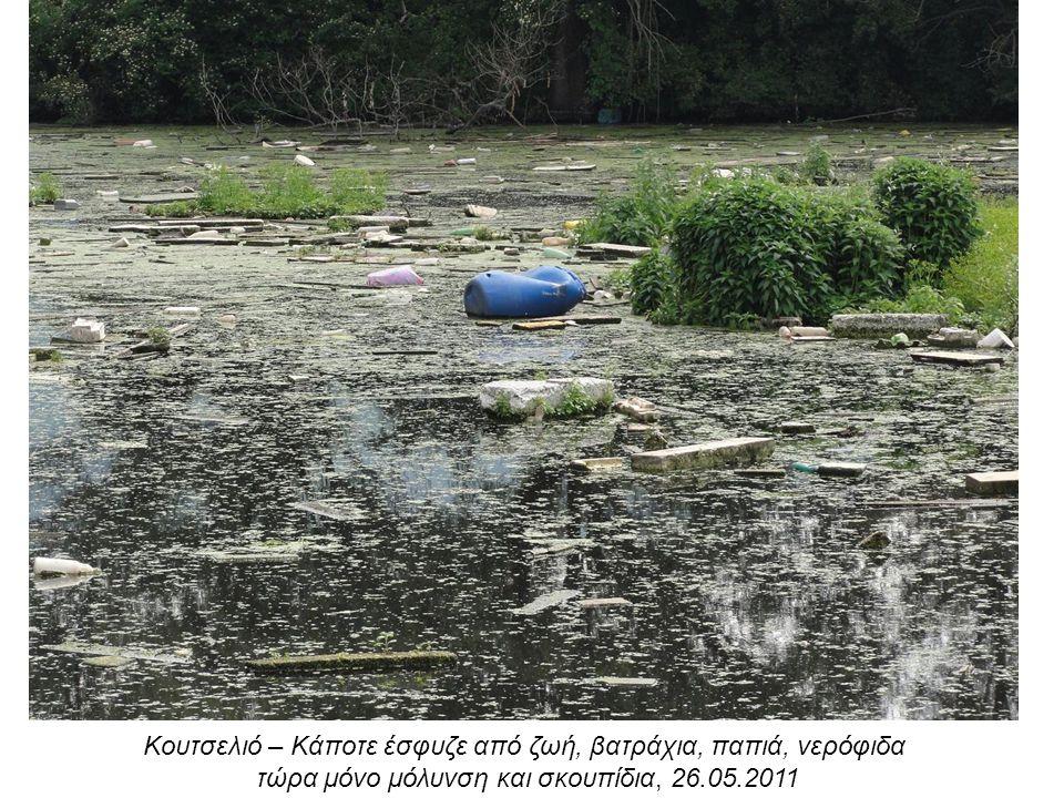 Κουτσελιό – Κάποτε έσφυζε από ζωή, βατράχια, παπιά, νερόφιδα τώρα μόνο μόλυνση και σκουπίδια, 26.05.2011