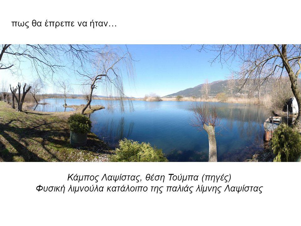 Κάμπος Λαψίστας, θέση Τούμπα (πηγές) Φυσική λιμνούλα κατάλοιπο της παλιάς λίμνης Λαψίστας πως θα έπρεπε να ήταν…