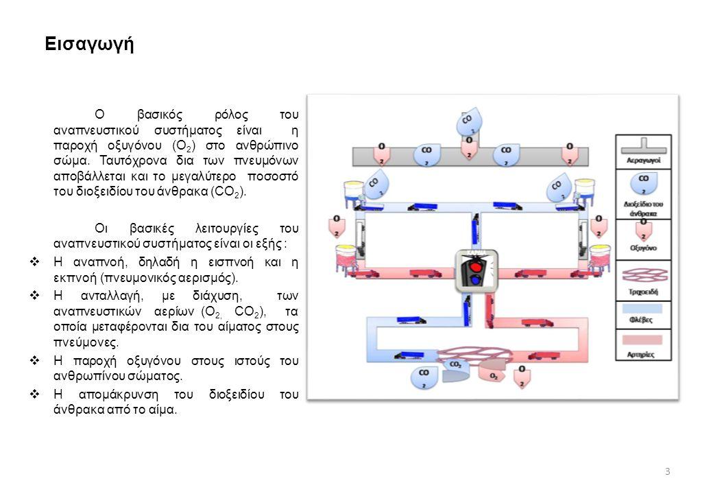 Εισαγωγή Ο βασικός ρόλος του αναπνευστικού συστήματος είναι η παροχή οξυγόνου (Ο 2 ) στο ανθρώπινο σώμα. Ταυτόχρονα δια των πνευμόνων αποβάλλεται και