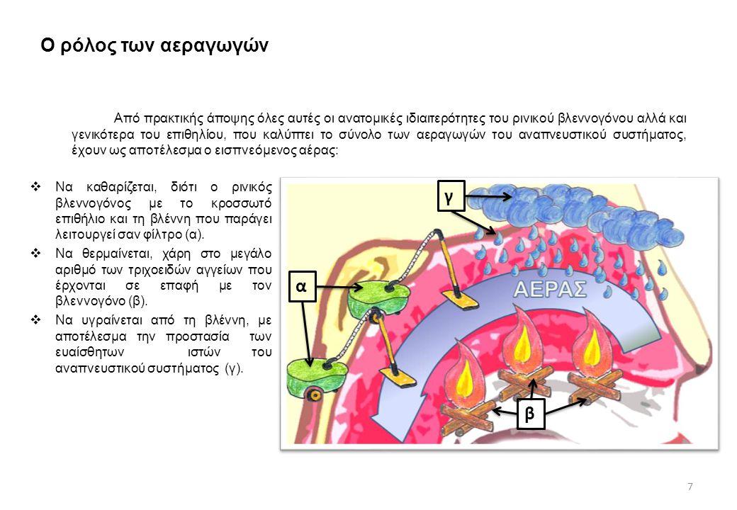 Ο ρόλος των αεραγωγών  Να καθαρίζεται, διότι ο ρινικός βλεννογόνος με το κροσσωτό επιθήλιο και τη βλέννη που παράγει λειτουργεί σαν φίλτρο (α).  Να