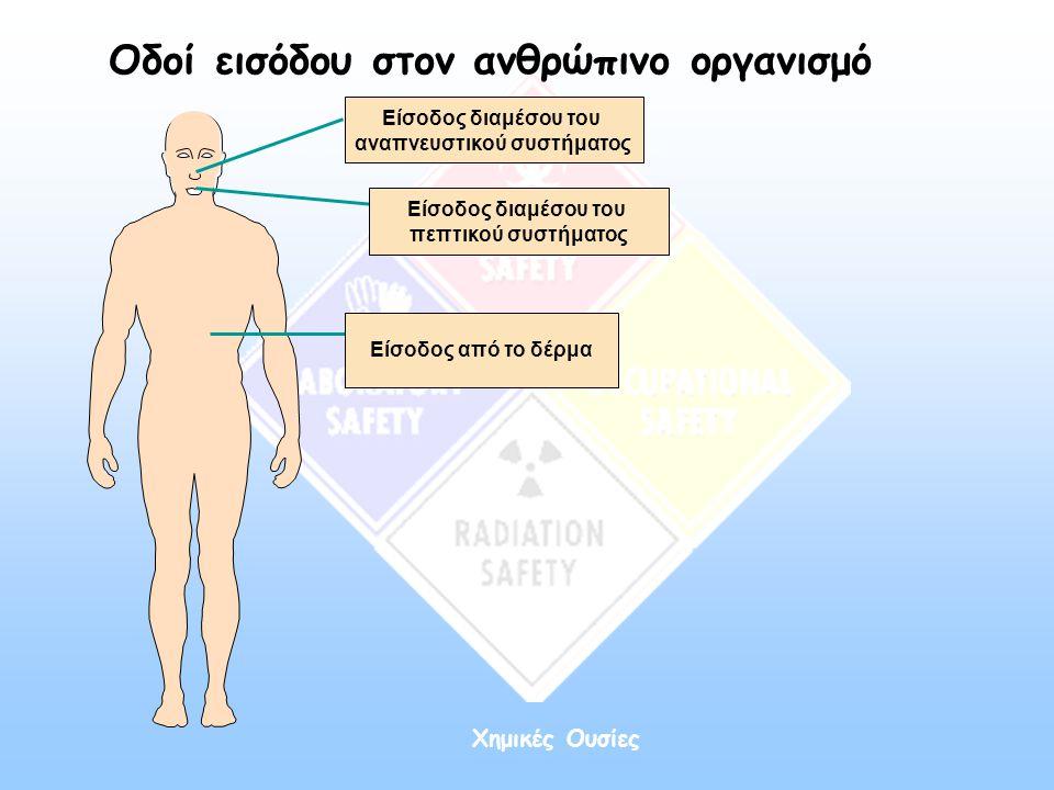Χημικές Ουσίες Οδοί εισόδου στον ανθρώπινο οργανισμό Είσοδος διαμέσου του αναπνευστικού συστήματος Είσοδος από το δέρμα Είσοδος διαμέσου του πεπτικού