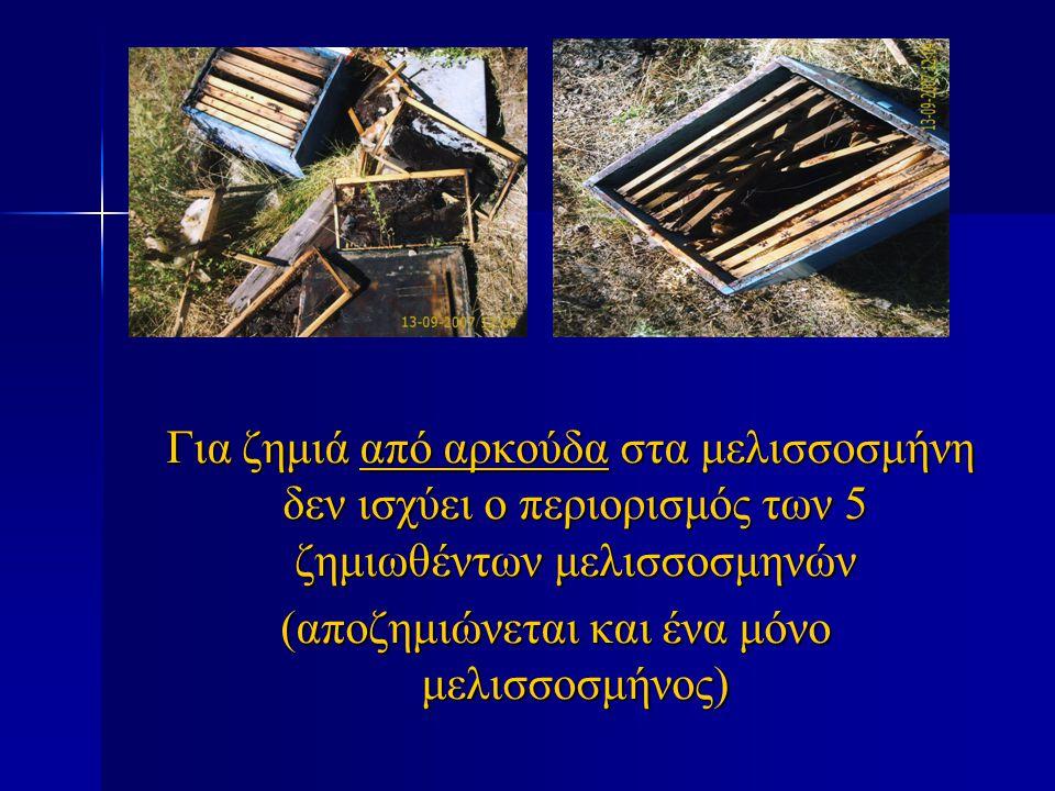 Για ζημιά από αρκούδα στα μελισσοσμήνη δεν ισχύει ο περιορισμός των 5 ζημιωθέντων μελισσοσμηνών Για ζημιά από αρκούδα στα μελισσοσμήνη δεν ισχύει ο πε